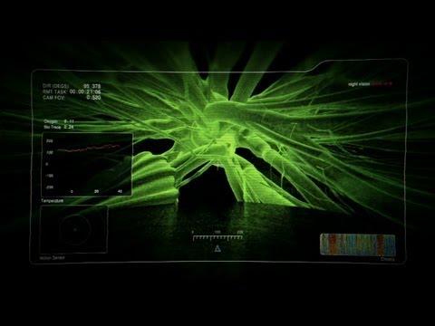 The Hybrid | Alien Encounters