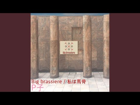 Big brassiere