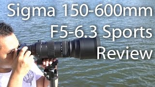 Please support my channel by purchasing the Sigma 150-600mm F5-6.3 Sport series lens through the following link - http://amzn.to/2p5yy6kTo use this lens on an E-mount body, you will need the Sigma MC-11 adapter (http://amzn.to/2mSOjet). You may also need to update the lens firmware to enhance performance with the Sigma USB Dock (http://amzn.to/2m2Bel1)In this video I take a look at the Sigma 150-600mm F5-6.3 Sport lens on the Sony A6500. Also to give people an update about how the contemporary version focused on the A6500 I show you a quick video of how fast it is. Tripod used in the video:LeoFoto LN-324CH Tripod + LeoFoto LH-40 Ballhead If you're interested in this tripod, leave a comment or send me a message :) Follow me and ask me questions! ➫ F A C E B O O K  - http://on.fb.me/rtdqar (@johnsisonphotos)➫ I N S T A G R A M - http://bit.ly/MsGf1t (@johnsison)➫ T W I T T E R -  http://bit.ly/1Uadibb (@JohnSison_)Intro by Flukemedia - http://bit.ly/2j3AxUE---------------------------------------------------------------------------------------------------------------------------------------B U S I N E S S :admin@johnsison.com---------------------------------------------------------------------------------------------------------------------------------------Gear used to film this video: Sony ILCE-7RM2 (http://amzn.to/2hlCr5z)Sony ILCE-7SM2 (http://amzn.to/2hft4no)Sony 24-70mm F2.8 G Master lens (http://amzn.to/2hEMXkZ)Sony 50mm F2.8 Macro (http://amzn.to/2hxHgcm)Rodelink Film Maker (http://amzn.to/2gwrrT9)Sandisk Extreme Pro 64gb 280MBs (http://amzn.to/2hfLnsk) Manfrotto MK190X3-2W (http://amzn.to/2j4SjGc)---------------------------------------------------------------------------------------------------------------------------------------I try to get back to everyone who asks me a question as quickly as possible but for me to 'Reply' to you, your gmail account has to be linked to your YouTube account. Thank you. ---------------------------------------------------------------------------------------------------------------------------------------DISCLAIMER: This video and description contains affiliate links, which means that if you click on one of the product links, I'll receive a small commission. This helps support the channel and allows us to continue to make videos like this. Thank you for the support!---------------------------------------------------------------------------------------------------------------------------------------