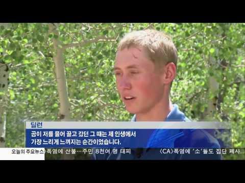 곰·상어에 물리고…피서객 수난  7.10.17 KBS America News