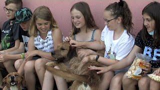 Výcvik psů na ZŠ Vodní