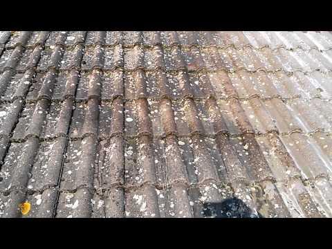 Comment appliquer anti mousse toiture la r ponse est sur for Anti mousse naturel toiture