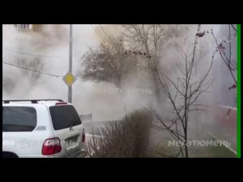 В Тюмени в горячем гейзере обварились люди (видео)
