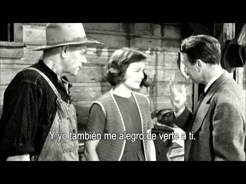 BELINDA (Johnny Belinda. Jean Negulesco, 1948). El lenguaje de signos