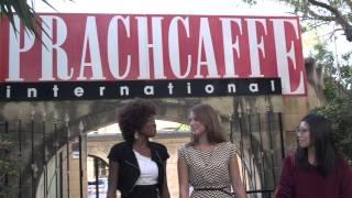 Our Partner School Sprachcaffe
