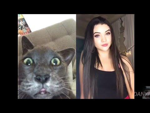 Funny Tik Tok Ironic Memes Compilation V7 Best Tik Tok Trolls_Legjobb videók: Vicces