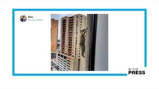 Video Social climber: Minnesota raccoon climbs skyscraper, becomes national hero MP3, 3GP, MP4, WEBM, AVI, FLV Januari 2019