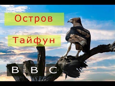 BBC  ДИКАЯ ПРИРОДА Остров тайфунов