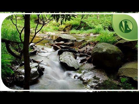 Imagens de felicidade -  Sons da Natureza Mu?sica para Limpar seus Pensamentos e Acalmar a Mente Paz Interior