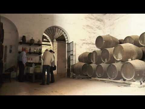 Video Ruta del Mosto Aljarafe thumbnail