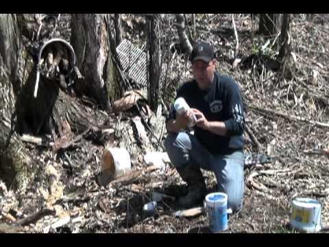 Techniques d'appâtage pour un site de chasse à l'ours