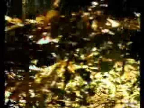 Battlelore - Storm of the Blades online metal music video by BATTLELORE
