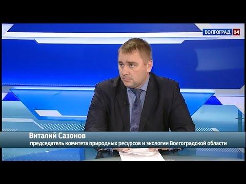 Виталий Сазонов, председатель комитета природных ресурсов и экологии Волгоградской области