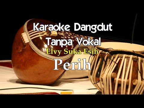 Video Karaoke Elvy Sukaesih - Perih download in MP3, 3GP, MP4, WEBM, AVI, FLV February 2017
