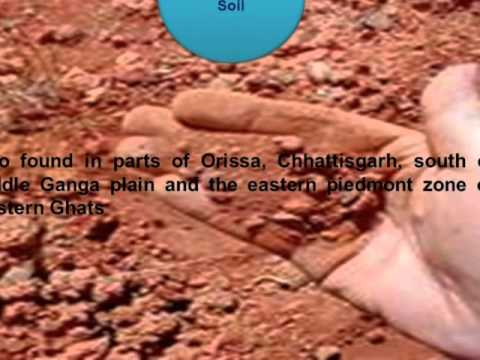 Cbse class 7 science soil types and its properties for What is rich soil called