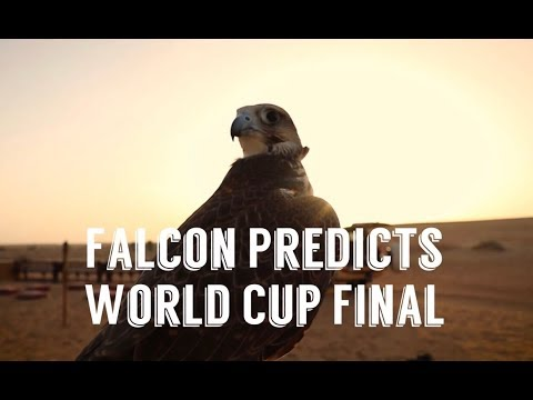 France vs Croatia: Falcon predicts 2018 WORLD CUP FINAL