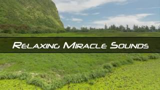 Video 1 Hour Relaxing Soothing Voice For Work and Concentration MP3, 3GP, MP4, WEBM, AVI, FLV Juli 2018