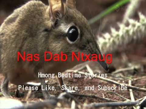 Nas Dab Ntxaug (видео)