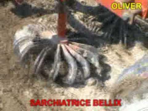 ROTOSARK BINEUSE WEEDING MACHINE DESYERBADORA HACKMASCHINE