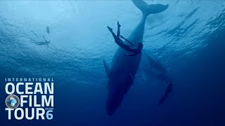 international Ocean Film Tour vol.6