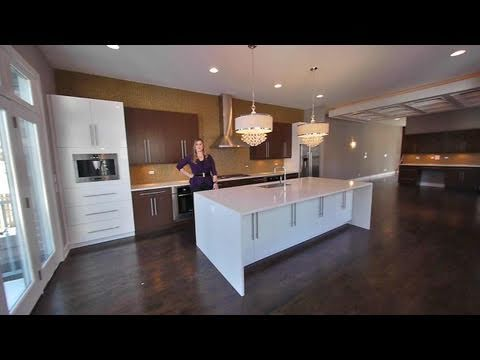 Open house – new light-filled home in West Bucktown