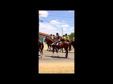 Santa Quitéria Vaquejada 2015 #2