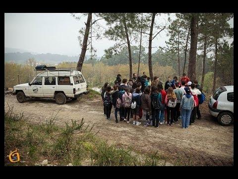 Alumnos de Escolas Proval reforestan Couso