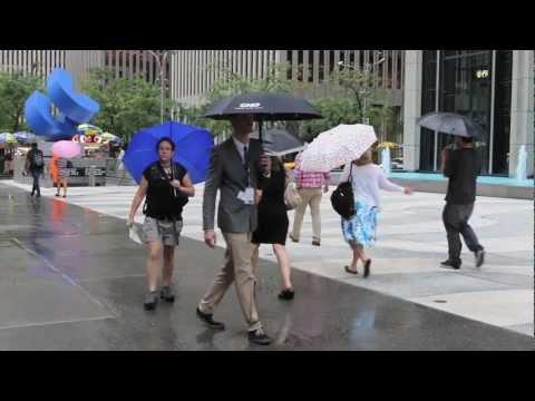 Compact Umbrella with LED Flashlight Handle - Myron Corporation