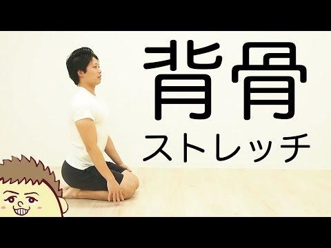 【背中の疲労とこわばりに】背骨・背中のストレッチ