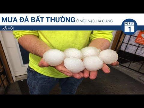 Mưa đá bất thường ở Mèo Vạc, Hà Giang | VTC1 - Thời lượng: 47 giây.