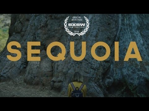 Sequoia (Trailer)