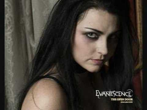 Tekst piosenki Evanescence - The Only One po polsku