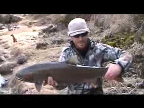 Spey fishing Stealhead on the Clearwater w/ ben walker.flv