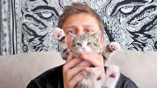 Girlfriend Kitten Surprise!