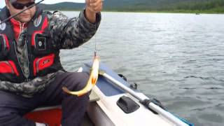 Рыбалка на Байкале.Чивыркуйский залив июль 2011 года.