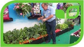 #434 Gartenshow Bloom (Irland, 2011) - Anbau von Gemüse in Erdsäcken
