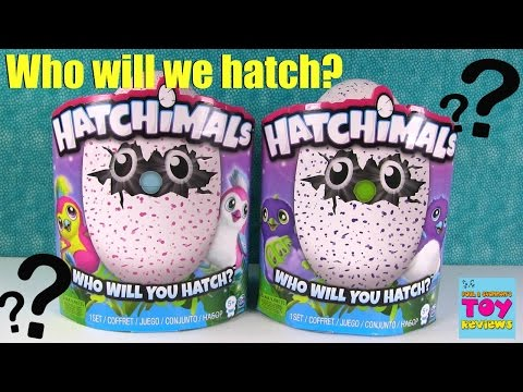 Let's Hatch Our Hatchimals Hatching Fun Surprise Egg | PSToyReviews