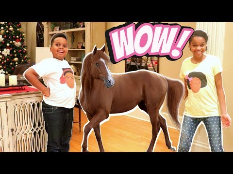 Xấu bé HORSE GOES WILD TRONG NHÀ! - Bad bé Shiloh và Shasha Onyx Kids - Thời lượng: 7:27.