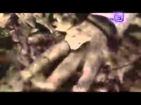Документальный цикл Нечисть. Русалки. от 25.10.2012