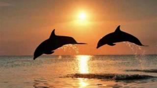 """Песента и изпълнението на Георги Христов / Georgi Hristov са много добри.Music : Toncho Rusev, Text : Petar KaraangovМузика: Тончо Русев, Текст: Петър КараанговИзведнъж на брега на един сезон,на брега на моето лято,ти застана на пустия, тих хоризонт,като птица от заминало ято.Ти застана на пустия тих хоризонт,като птица от заминало ято.Светлият блясък на твойта ръка,през нощта на душата ми мина,и потече през мен една бистрарека от прозрачно и младо вино.И потече през мен една бистрарека от прозрачно и младо вино.Припев:Презимувай при мен.В моя свят, в моя свят остани.Ще се срещнем две планети изгубени.Аз те гледам смутен.В мен звучи оня паметен стих :""""Господи, колко си хубава"""".На брега на света, опустял и тих,седим две планети изгубени.И се рони брега на един нашсезон и се рони моето лято.И се рони брега на един нашсезон и се рони моето лято."""