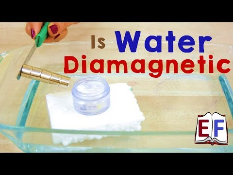 Is water Di-magnetic ? School Science Physics Experiment