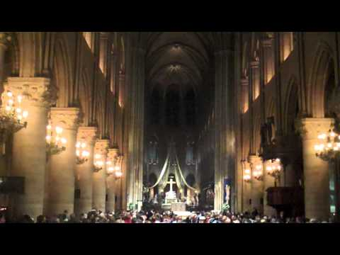 Pipe Organ Cathedral Of Notre Dame Paris