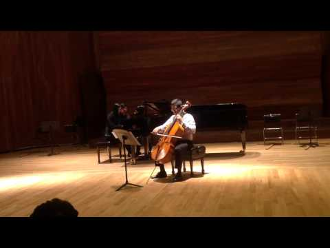 Johannes Brahms Cello Sonata in E minor | I. Allegro non troppo