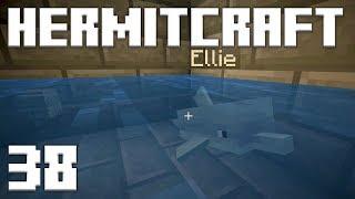 •Hermitcraft 6 - Ep. 38: TURBO DOLPHINS! (Minecraft 1.13)•