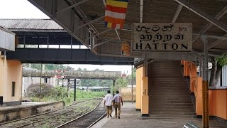 Haputale Sri Lanka  city pictures gallery : Sri Lanka 2015 part 4 - Hatton-Adam's Peak-Haputale-Lipton's Seat