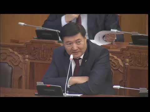 С.Чинзориг: Монгол Улсад хэдэн сая төгрөгийн хөрөнгө оруулсан хүнийг гадаадын хөрөнгө оруулагч гэх вэ?