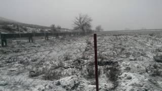 İzmir'den kar manzaraları. Bu sene ilk defa ikinci kar