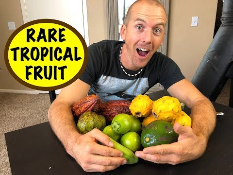 Rare Exotic Fruit Is In This Box!