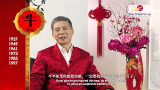 2013 Chinese Zodiac Forecast For Ox By Grand Master Tan Khoon Yong  Feng Shui   Singapore