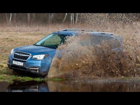 Subaru Forester - Offroad-тест рестайловой модели (видео)